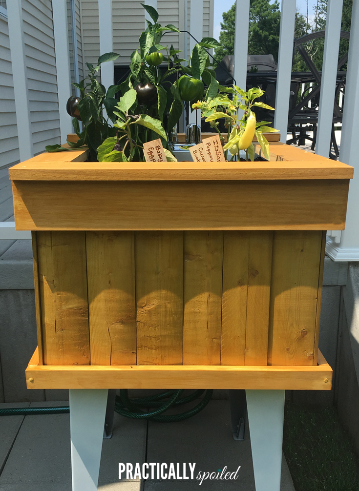 I Wet My Plants: Utility Sink to Standing Garden DIY - practicallyspoiled.com